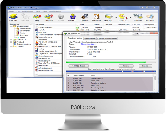 Internet Download Manager 6.21 Build 3 Retail
