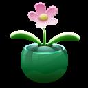 Flower-128